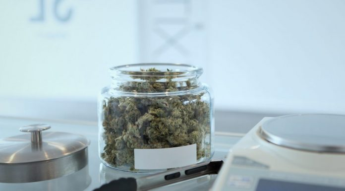 Weed in a jar in a laboratory environment