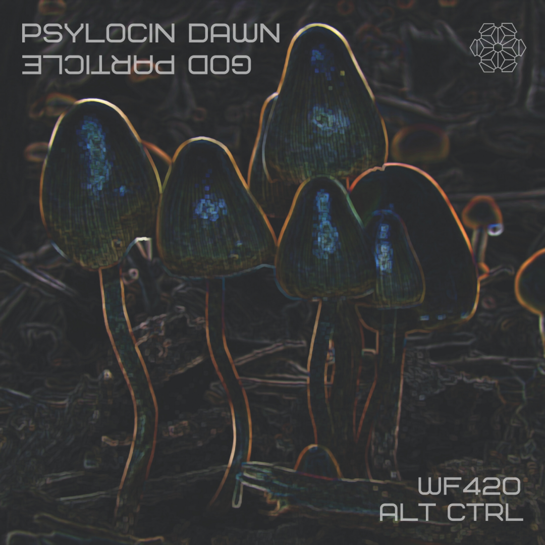 Psilocin Dawn – More Madness From God Particle